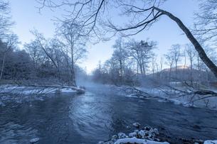 北海道 阿寒郡阿寒町の樹氷と気嵐の写真素材 [FYI04777493]