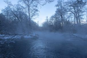 北海道 阿寒郡阿寒町の樹氷と気嵐の写真素材 [FYI04777496]