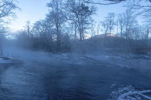 北海道 阿寒郡阿寒町の樹氷と気嵐の写真素材 [FYI04777497]