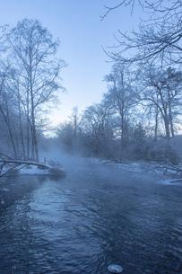 北海道 阿寒郡阿寒町の樹氷と気嵐の写真素材 [FYI04777498]