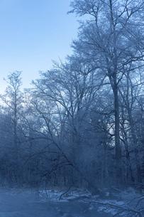 北海道 阿寒郡阿寒町の樹氷と気嵐の写真素材 [FYI04777503]