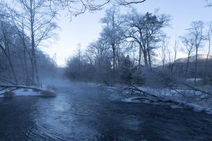 北海道 阿寒郡阿寒町の樹氷と気嵐の写真素材 [FYI04777508]