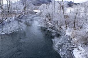 北海道 阿寒郡阿寒町の樹氷と気嵐の写真素材 [FYI04777511]