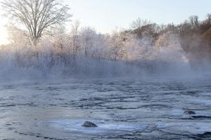 北海道 阿寒郡阿寒町の樹氷と気嵐の写真素材 [FYI04777522]