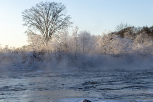 北海道 阿寒郡阿寒町の樹氷と気嵐の写真素材 [FYI04777525]