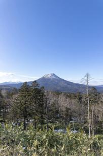 北海道 初冬の雄阿寒岳の風景の写真素材 [FYI04777565]