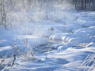 冬の川の写真素材 [FYI04777621]