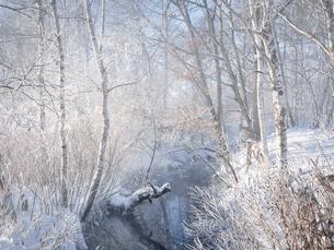 冬の川の写真素材 [FYI04777624]