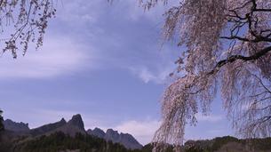 妙義山と枝垂桜の写真素材 [FYI04777643]
