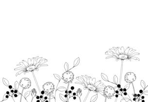 花畑の線画イラストのイラスト素材 [FYI04777686]