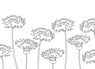 タンポポの線画イラストのイラスト素材 [FYI04777687]