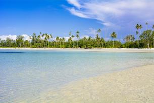 ビンタン島の美しいサンゴ礁の海の写真素材 [FYI04777768]