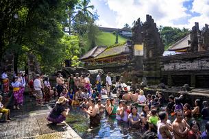 バリ島のティルタ・ウンプル寺院の写真素材 [FYI04777781]