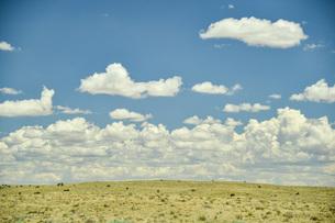 壮大な草原と雲の写真素材 [FYI04777925]