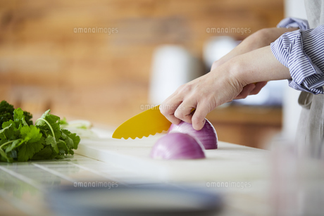 玉ねぎを切る女性の手元の写真素材 [FYI04777999]