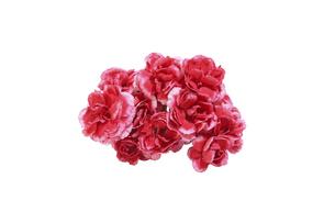 カーネーションの花束の写真素材 [FYI04778028]