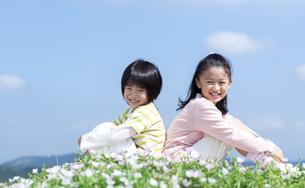 花畑に座る女の子と男の子の写真素材 [FYI04778074]