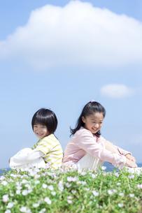 花畑に座る女の子と男の子の写真素材 [FYI04778076]