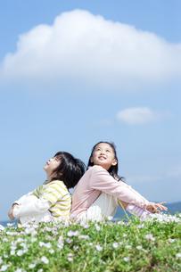 花畑に座る女の子と男の子の写真素材 [FYI04778078]