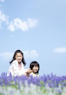花畑に座る女の子と男の子の写真素材 [FYI04778084]
