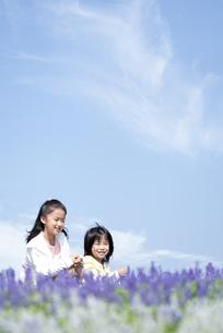 花畑に座る女の子と男の子の写真素材 [FYI04778085]