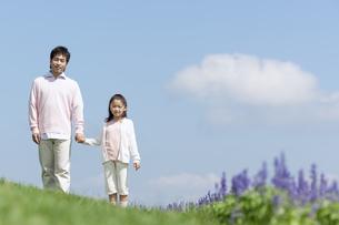 手をつないで芝生に立つ親子の写真素材 [FYI04778111]