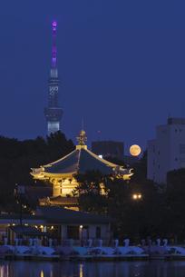 中秋の名月 不忍池辯天堂と東京スカイツリーライトアップの写真素材 [FYI04778348]