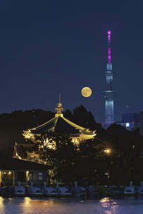 満月と不忍池辯天堂と東京スカイツリーライトアップの写真素材 [FYI04778353]