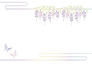胡蝶 アゲハチョウと藤の花の切り絵風デザイン 背景素材 イラストのイラスト素材 [FYI04778508]