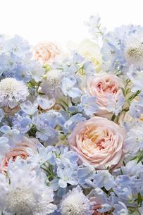 ピンクのバラと水色のデルフィニウムのアレンジメントの写真素材 [FYI04778611]