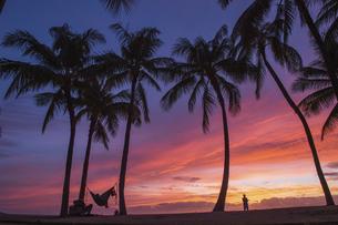 ハワイアンサンセットの写真素材 [FYI04778954]