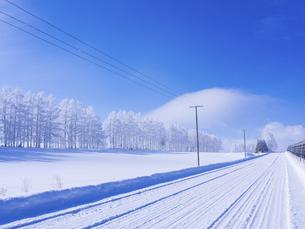 冬の十勝の写真素材 [FYI04778984]