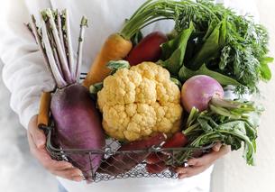 鎌倉野菜の写真素材 [FYI04779046]