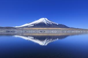 冬の山中湖と富士山の写真素材 [FYI04779248]