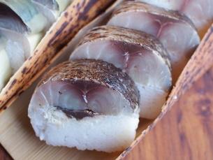 鬼鯖寿司の写真素材 [FYI04779270]