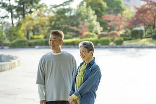 秋の公園にたたずむ笑顔の日本人シニア夫婦の写真素材 [FYI04779345]