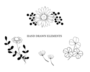 ナチュラルな手描き線画のイラストのイラスト素材 [FYI04779589]
