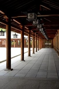橿原神宮,境内の外拝殿から廊下の写真素材 [FYI04779593]