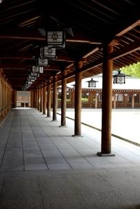 橿原神宮,境内の外拝殿廊下の写真素材 [FYI04779597]