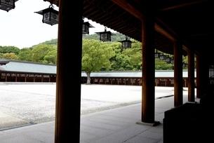 橿原神宮,境内の外拝殿から内拝殿の写真素材 [FYI04779598]