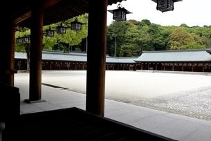 橿原神宮,境内の外拝殿から内拝殿の写真素材 [FYI04779599]