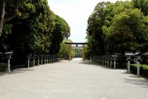橿原神宮,境内の第二鳥から第一鳥居の写真素材 [FYI04779609]