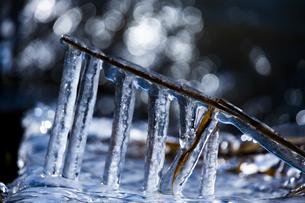 琵琶湖畔の氷 の写真素材 [FYI04779616]