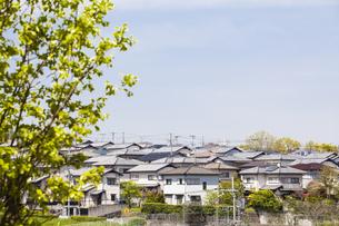 奈良県明日香村の風景の写真素材 [FYI04779950]