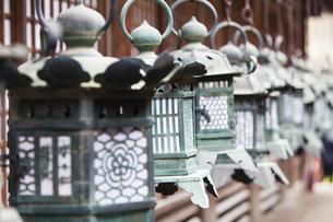 春日大社 本殿の灯籠の写真素材 [FYI04780007]