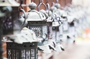 春日大社 本殿の灯籠の写真素材 [FYI04780008]