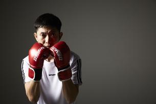 ボクシングで構える男性の写真素材 [FYI04780386]