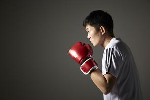 ボクシングで構える男性の写真素材 [FYI04780389]