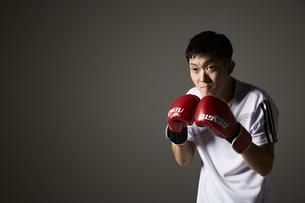 ボクシングで構える男性の写真素材 [FYI04780391]