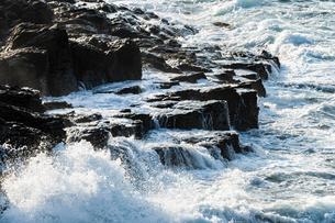 激しい波の岩場の写真素材 [FYI04780611]
